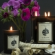 LA BAYADERE - Sandalwood and Patchouli candle
